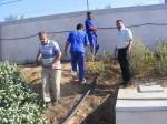 تهيئة الحدائق بمستشفى غزة الأوروبي لخلق جو مناسب للمرضى