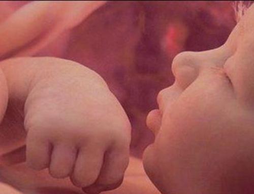 أمومة آمنة.. أطفال أصحاء