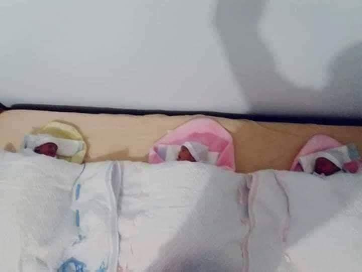 """فور وصولهم عبر احدى معابر غزة… """"الصحة""""الحجر الصحى بالوسطى يحتضن التوائم الثلاث ويجند خدماته الصحية لرعايتهم"""
