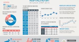 Hospitals Report 2014
